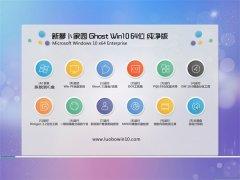 新萝卜家园Win10 2021.04 64位 体验纯净版